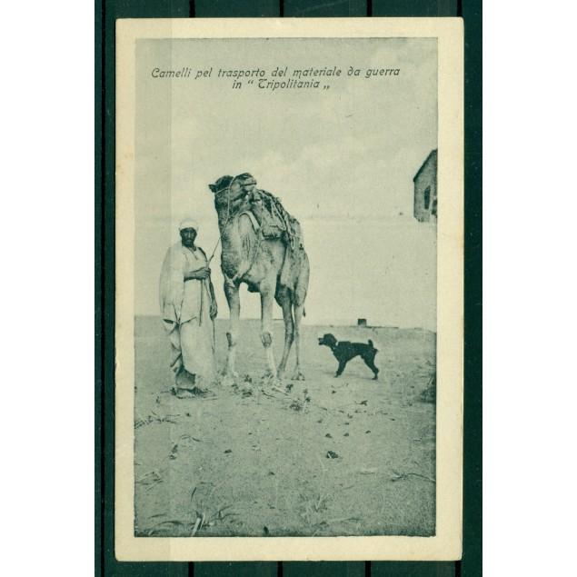"""Libye ca. 1910 - CPA """"chameaux pour le transport de matériel de guerre en Tripolitaine"""""""