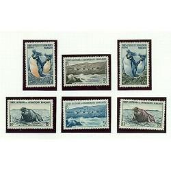 PINGUINI & ELEFANTI MARINI - PENGUINS & SEAL ELEPHANT T.A.A.F. 1956 Common St
