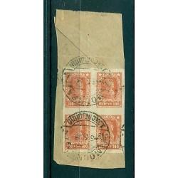 RSFSR 1922 - Michel n. 211 B  - Definitive